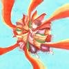 Foorin team E / Paprika [CD+DVD] [限定]
