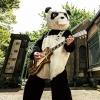 ギターパンダ - ギターパンダのロックンロールパンデミック [CD]