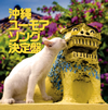 おおらかで笑える沖縄民謡を集めた『沖縄ユーモアソング決定盤』が発売