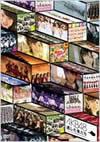 逃した魚たち〜シングルビデオコレクション〜