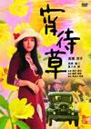 宵待草 [DVD] [2013/06/04発売]