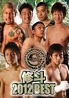 修斗 2012 BEST [DVD] [2013/06/20発売]
