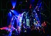 大塚愛/LOVE FANTASTIC TOUR 2014〜おぉーつかあいはまほぉーつかぁい〜 [DVD] [2014/12/17発売]