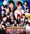 豆腐プロレス The REAL 2017 WIP CLIMAX in 8.29 後楽園ホール〈2枚組〉 [Blu-ray]