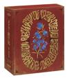 メアリと魔女の花 コレクターズ・エディション:4K Ultra HD+ブルーレイ〈数量限定・2枚組〉 [Ultra HD Blu-ray]