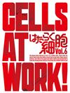 はたらく細胞 6〈完全生産限定版〉 [Blu-ray]