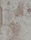 椎名林檎/椎名林檎と彼奴等の居る真空地帯 [Blu-ray] [2018/11/21発売]