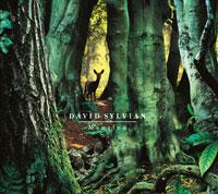"""【デヴィッド・シルヴィアンinterview】「ただ自分の直感に従って」——即興によるトラックを聴き、その場で詞とメロディを付けて作り上げたシルヴィアン流""""即興""""アルバム"""
