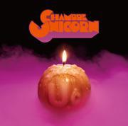 ユニコーン、16年ぶりの復活アルバム発売と全国ツアー開催を発表!