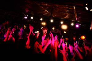THE BAWDIES、日本武道館ワンマン・ライヴが開催決定!
