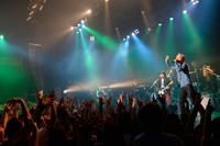 レピッシュのベスト2作がハイレゾ配信、大阪・川崎でワンマン開催