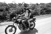レニー・クラヴィッツの最新MVはロード・ムービー風