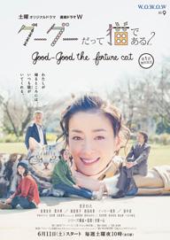 宮沢りえ主演WOWOWドラマ『グーグーだって猫である』の続編は6月スタート