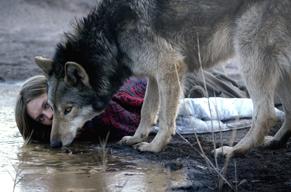 オオカミに惹かれていく女性を描いた「ワイルド わたしの中の獣」 ジェイムス・ブレイク楽曲を使用