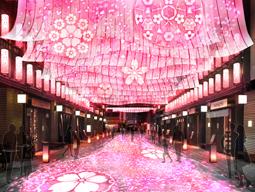 〈日本橋 桜フェスティバル〉から初のプロモーション・ムービー公開 音楽はSTUTSが担当
