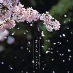 ケツメイシの名曲「さくら」、ついに着うたフル配信解禁!!