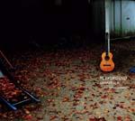 山本精一、ソロ・アルバム『PLAYGROUND』のアコースティック・ヴァージョン・アルバムを発表
