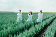 Negicco、ベスト・アルバム第2弾にKIRINJI書き下ろし新曲を収録