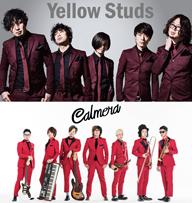 Yellow StudsとCalmeraがVRムービー「わたしからあなたへ、言葉はいらない」に主題歌を提供