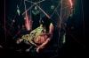 DIR EN GREY、ニュー・シングル「朧」衝撃の60秒ティザー公開