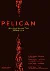 ポスト・メタルの先駆者、ペリカンが10年ぶりの来日公演を開催