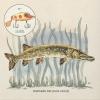 ニック・ロウ、4曲入りニューEP『レイ・イット・オン・ミー』を6月に発表