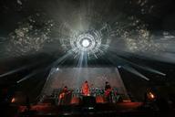 THE COLLECTORS、30周年を記念した武道館公演を映像化