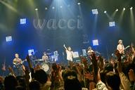 wacciの全国ツアーがスタート ファイナルはパシフィコ横浜メインホールに決定