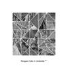 ペンギン・カフェ、コーネリアスのリミックスを収録した配信EPをリリース