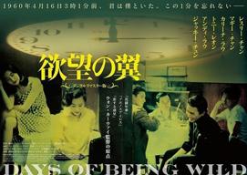 ウォン・カーウァイ監督作『欲望の翼』デジタルリマスター版、2018年2月公開