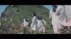 櫻坂46、1stシングル表題曲「Nobody's fault」MV公開 パッケージ商品詳細も発表
