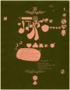 米国のインディー・レーベルの老舗「JAGJAGUWAR」 25周年を記念したキャンペーンを開催