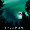 ACCEPT(JP)、7枚目のトータル・コンセプト・アルバム『APOGEE』リリース