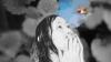 グーテフォルク、新作シングル「くちぶえのすゝめ」リリース&トレイラー公開