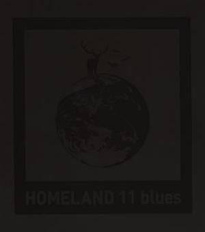 tacica / HOMELAND 11 blues
