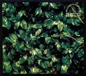 エレファントカシマシ / ココロに花を deluxe edition [デジパック仕様] [2CD] [Blu-spec CD2]