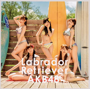 AKB48 / ラブラドール・レトリバー(Type B) [CD+DVD] [限定]