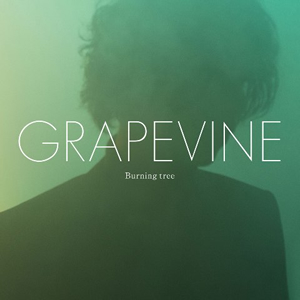 GRAPEVINE / Burning tree [CD+DVD] [限定]
