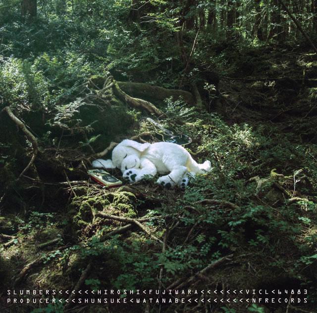 HIROSHI FUJIWARA / SLUMBERS
