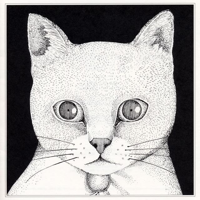 テンテンコ / ALL YOU NEED IS CAT〜猫こそはすべて