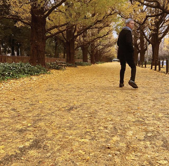 佐野元春 / 或る秋の日 [限定]
