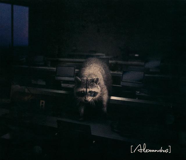 [Alexandros] / Beast [CD+DVD] [限定]