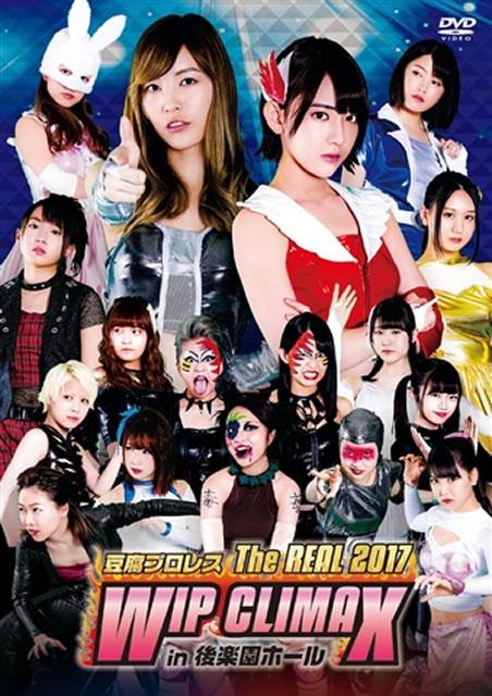 豆腐プロレス The REAL 2017 WIP CLIMAX in 8.29 後楽園ホール〈2枚組〉 [DVD]